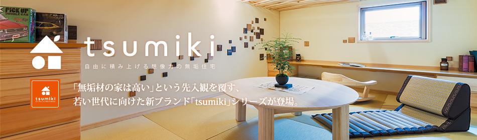 visual_tsumiki_003